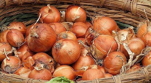 Cebollas (flickr.com)
