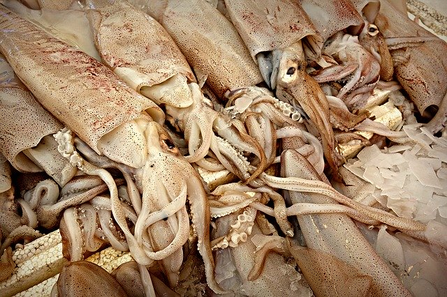 Calamares para rellenar