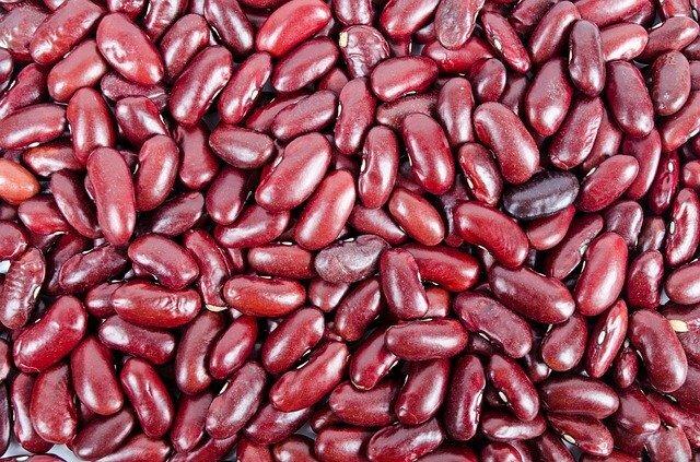 Ensalada de alubias rojas (ingredientes)