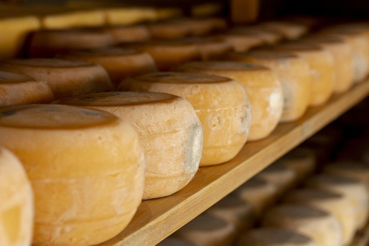 Maduración de quesos curados
