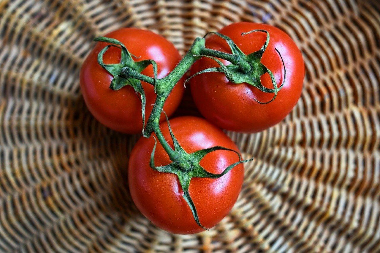Receta sopas de tomate extremeñas